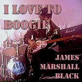I Love to Boogie by James Marshall Black