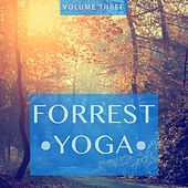 Forrest Yoga, Vol. 3 (Feel The Inner Power And Refresh Your Soul And Mind) by Various Artists