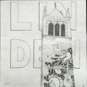 Linden by Linden