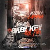The Baby Kev: Lost Files, Vol. 1 by Kush Lamma