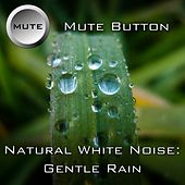 Play & Download Gentle Rain by Mute Button | Napster