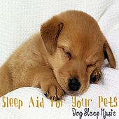 Play & Download Sleep Aid for Your Pets; Music for Dogs & House Hold Pets, Sleep Lullaby by Dog Sleep Music | Napster