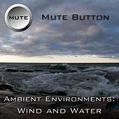 Play & Download Ambient Environments: Wind And Water by Mute Button | Napster
