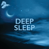 Deep Sleep by Various Artists