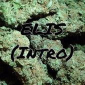 Solo Per Sta M***a (Intro) by Elis