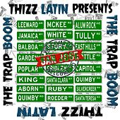 The Trap Boom by Various Artists