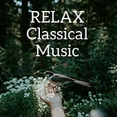 Relax Classical Music by Various Artists