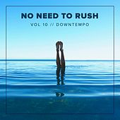 No Need To Rush, Vol.10: Downtempo - EP by Various Artists