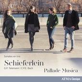 Telemann & C.P.E. Bach: Sonates en trio by Various Artists