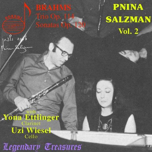 Brahms: Trio Op. 114, Sonatas Op. 120 by Pnina Salzman