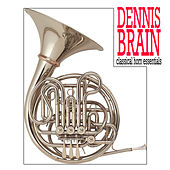 Play & Download Dennis Brain:classical Horn by Various Artists | Napster