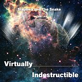 Virtually Indestructible by Stephen & The Snake