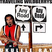 Play & Download Any Road by Ukulele Ray | Napster