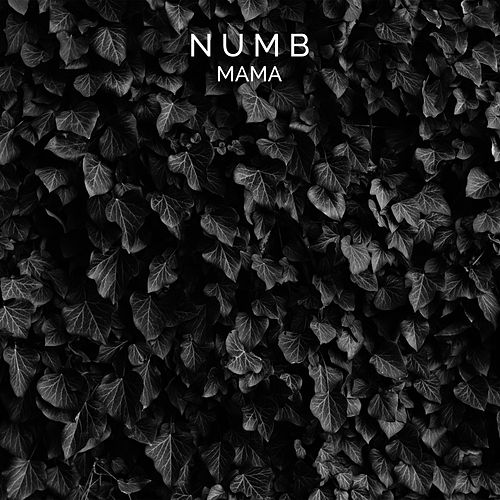 Mama by Numb