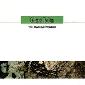 You make me wonder (Radio Edit) by H.P. Baxxter