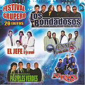 Festival Grupero 20 Exitos by Various Artists