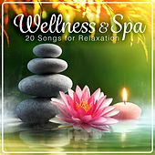 Wellness & Spa - 20 Songs for Relaxation by Various Artists