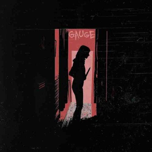 Gauge by Gauge