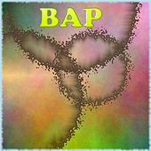 BAP Electrinic by Daniel
