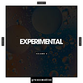 Experimental, Vol. 2 by Various Artists