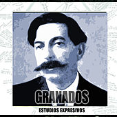 Play & Download Estudios Expresivos Y Otros by Granados | Napster