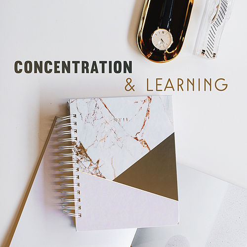 Concentration & Learning – Best New Age Music for Study, Train Your Mind, Easy Learning by Studying Music