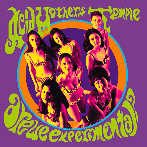 Play & Download Are We Experimental? by Acid Mothers Temple | Napster