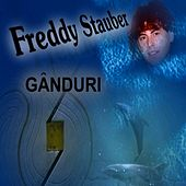 Romanian Pop - Ganduri by Freddy Stauber