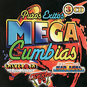 Play & Download Puros Exitos - Mega Cumbias by Various Artists | Napster