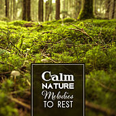 Calm Nature Melodies to Rest – Soothing Nature Waves, Healing Touch, Peaceful Mind Music by Sounds of Nature Relaxation