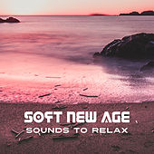 Soft New Age Sounds to Relax – Easy Listening, Peaceful Music, Stress Relief, Mind Relaxation Music, Time to Rest by The Relaxation