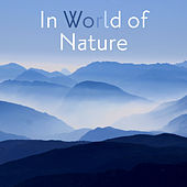 In World of Nature – Calm Meditation, Relaxing Music to Rest, Soothing Sounds, Singing Birds, Pure Waves, Delicate Rain, Zen by Sounds Of Nature