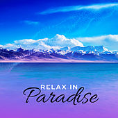 Relax in Paradise – Beach Music, Deep Rest, Summer Chill Out, Holiday Vibes, Ibiza Summertime, Calm Down by Ibiza Chill Out