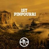 Pinmusik 1st Labelsampler by Various Artists
