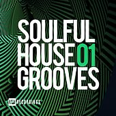 Soulful House Grooves, Vol. 01 - EP by Various Artists