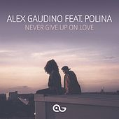Never Give Up on Love by Alex Gaudino