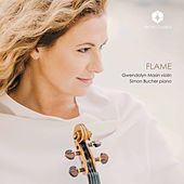 Flame by Gwendolyn Masin