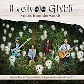 Voices From The Woods by Various Artists