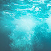 Awaiting the Flood (2017) by Devil Sold His Soul