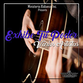 Exhibe Tu Poder by Various Artists