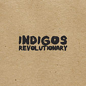 Revolutionary by Indigos