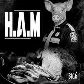 H.A.M. by Big 6