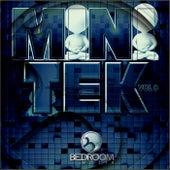 Mini Tek, Vol. 8 - EP by Various Artists