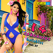 14 Cañonazos Bailables Vol. 57 by Various Artists