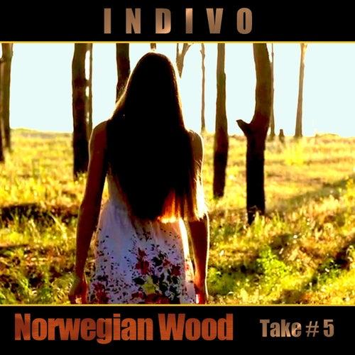 Norwegian Wood de Indivo