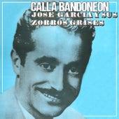 Calla Bandoneon by Jose Garcia y Sus Zorros Grises