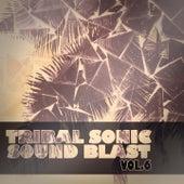 Tribal Sonic Soundblast,Vol.6 by Various Artists