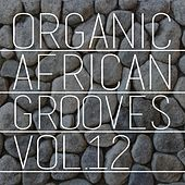 Organic African Grooves, Vol.12 by Various Artists