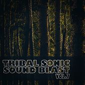 Tribal Sonic Soundblast,Vol.7 by Various Artists