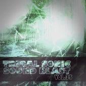 Tribal Sonic Soundblast,Vol.35 by Various Artists